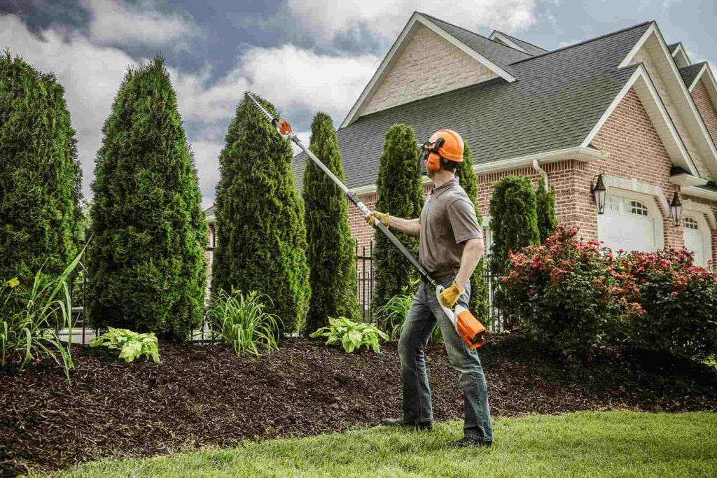 Encinitas-Carlsbad CA Tree Trimming and Stump Grinding Services-We Offer Tree Trimming Services, Tree Removal, Tree Pruning, Tree Cutting, Residential and Commercial Tree Trimming Services, Storm Damage, Emergency Tree Removal, Land Clearing, Tree Companies, Tree Care Service, Stump Grinding, and we're the Best Tree Trimming Company Near You Guaranteed!