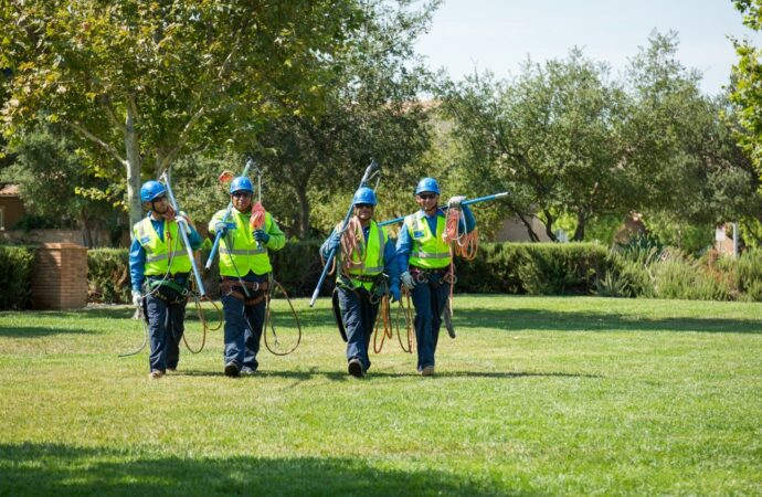 San Marcos-Carlsbad CA Tree Trimming and Stump Grinding Services-We Offer Tree Trimming Services, Tree Removal, Tree Pruning, Tree Cutting, Residential and Commercial Tree Trimming Services, Storm Damage, Emergency Tree Removal, Land Clearing, Tree Companies, Tree Care Service, Stump Grinding, and we're the Best Tree Trimming Company Near You Guaranteed!