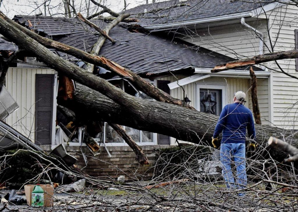Storm Damage-Carlsbad CA Tree Trimming and Stump Grinding Services-We Offer Tree Trimming Services, Tree Removal, Tree Pruning, Tree Cutting, Residential and Commercial Tree Trimming Services, Storm Damage, Emergency Tree Removal, Land Clearing, Tree Companies, Tree Care Service, Stump Grinding, and we're the Best Tree Trimming Company Near You Guaranteed!