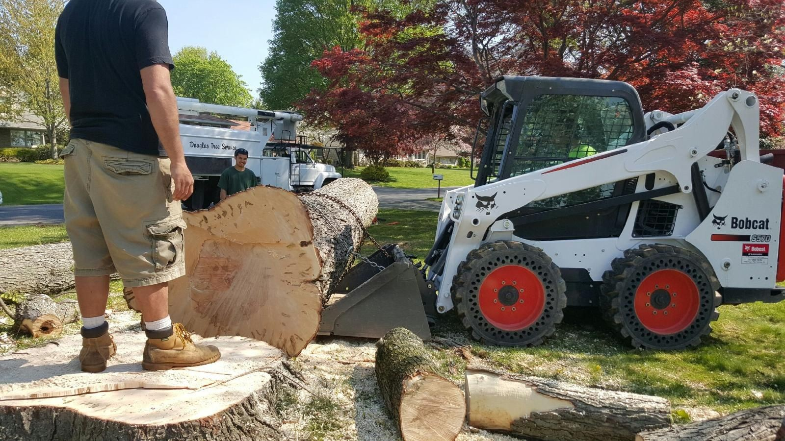 Vista-Carlsbad CA Tree Trimming and Stump Grinding Services-We Offer Tree Trimming Services, Tree Removal, Tree Pruning, Tree Cutting, Residential and Commercial Tree Trimming Services, Storm Damage, Emergency Tree Removal, Land Clearing, Tree Companies, Tree Care Service, Stump Grinding, and we're the Best Tree Trimming Company Near You Guaranteed!